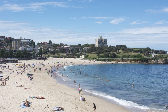 The beach in Sydney