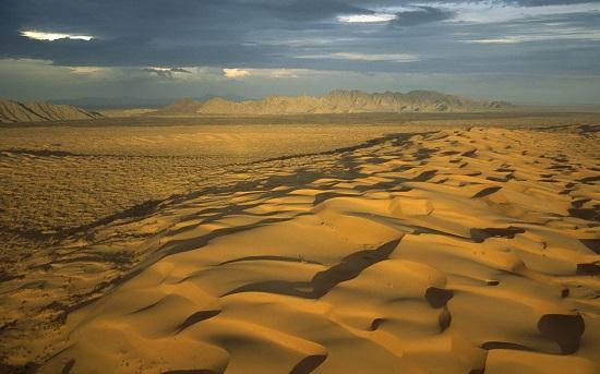 La Riserva della Biosfera El Pincante y Gran Desierto de Altar