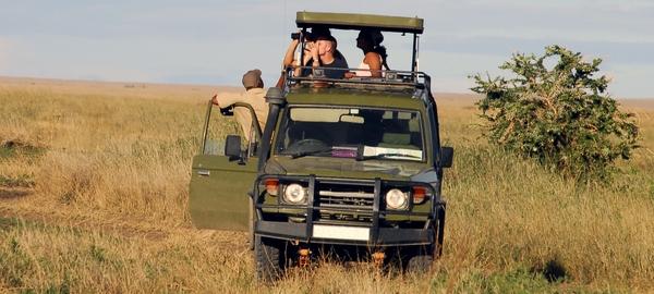 Partire in safari